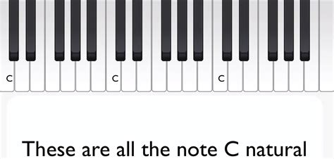 Music Theory From the Ground Up