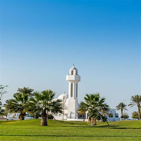 Cheap Flights to Dammam - Pegasus Airlines