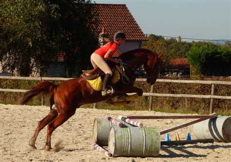 cours equitation st-philippe