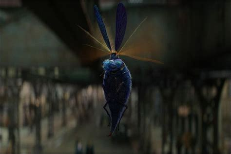 « le billywig » | Fantastic Beasts | Les animaux