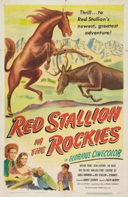 Red Stallion in the Rockies - Wikipedia