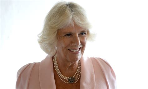 Camilla Parker-Bowles wows in elegant pastel pink outfit