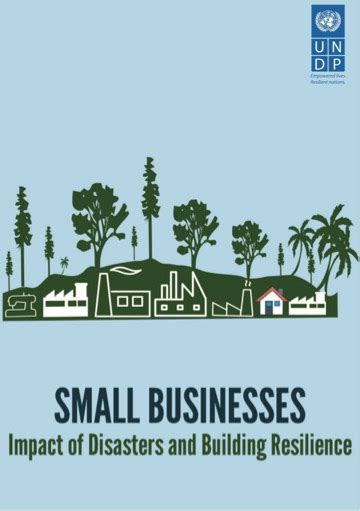 Small Businesses - Impact of Disasters and Building Resilience