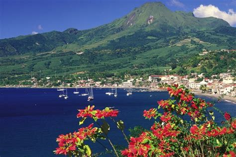 Deal of the Week: Learn French in Martinique for Less Than