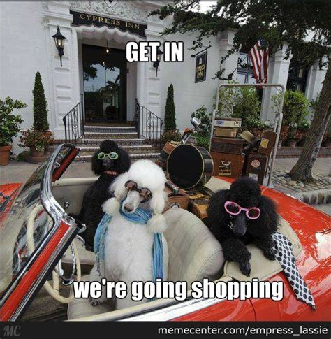 We're Going Shopping by empress_lassie - Meme Center